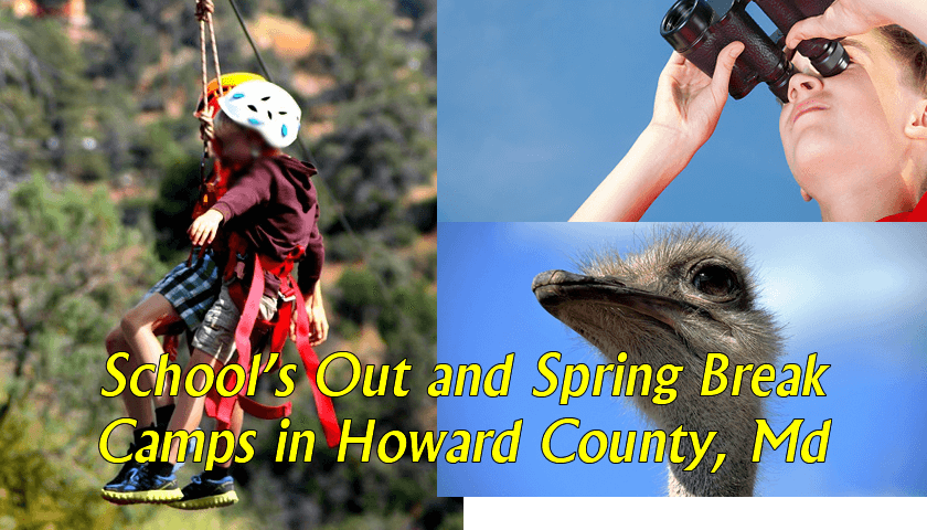 School's Out and Spring Break Camps in Howard County Maryland